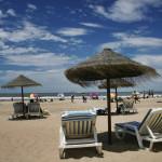 Jose Ignacio Playa Brava chairs