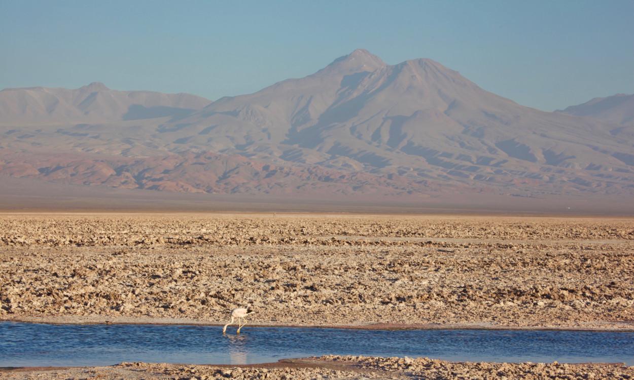 Salar de Atacama salt flat