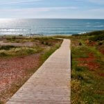 Praia do Amado walkway